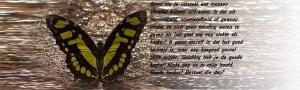 Vlinder goede kanker besaat niet met tekst