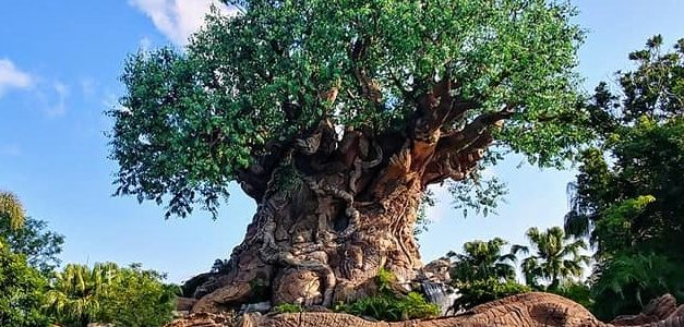 Animal Kingdom. Reisblog Florida 07 (3 juli 2018)